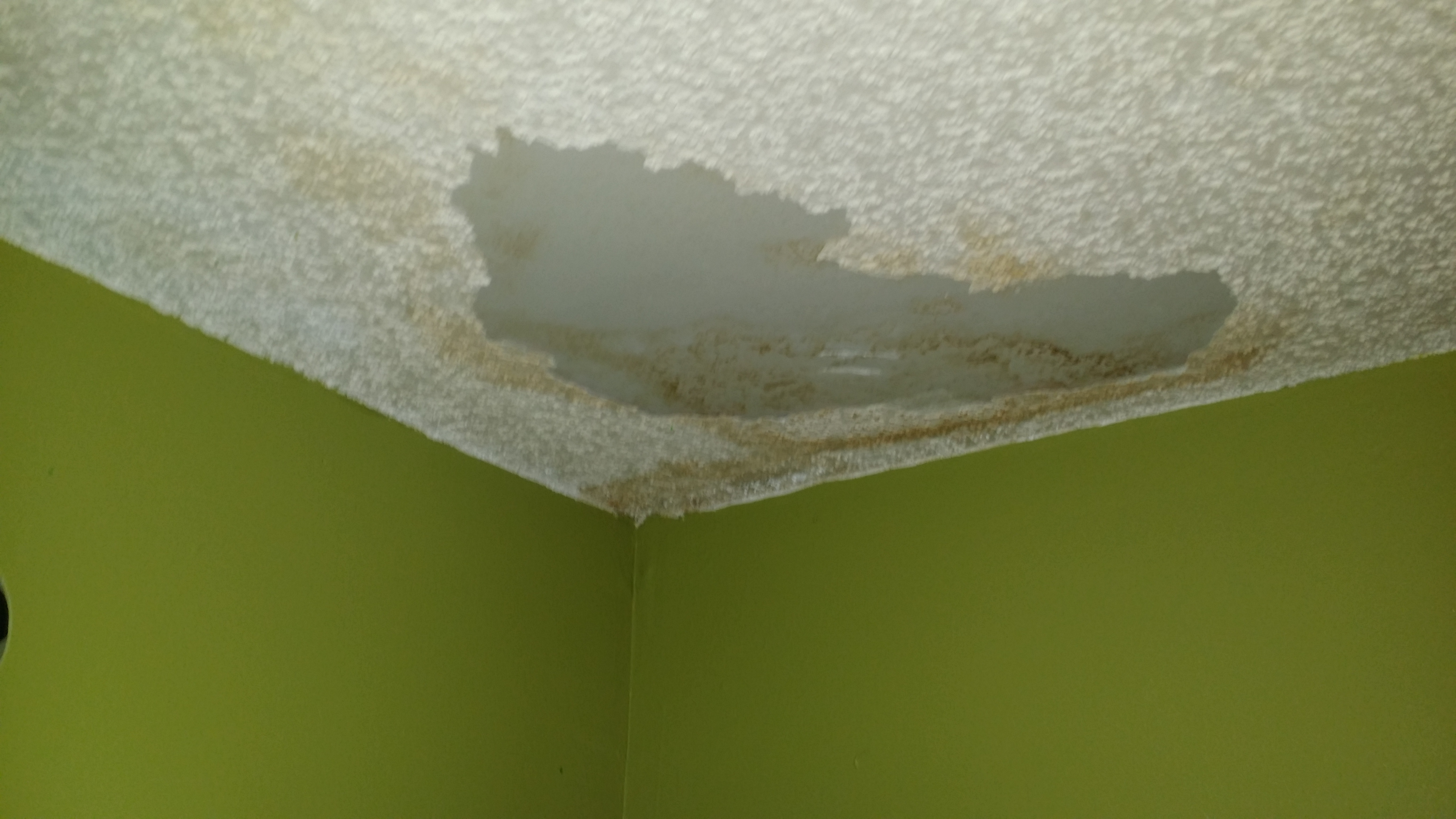 Tile Roof Experts Your Leak Experts